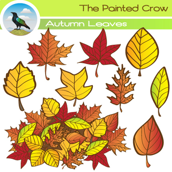 Autumn Leaves Clipart Set - Fall Leaves 18 Piece Set - Col
