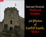 18 Sensei-tional Medieval Castle Photos: Cardiff Castle, Wales