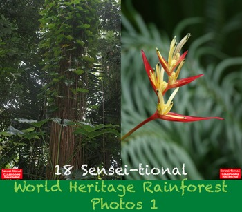 18 Sensei-tional World Heritage Rainforest Photos: Set 1