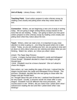 18 TC Minilessons - Writer's Workshop - Literary Essay