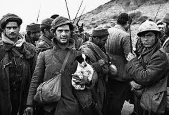 1984 Spanish Civil War-Being Hit By A Bullet Orwell Open Book Quiz+ NF Reading
