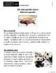 1er Grado. Evaluacion 2 de Literatura. Guía del maestro y clave de respuestas