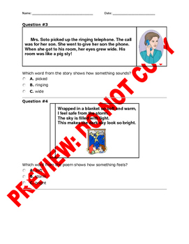 1st Grade CCSS RL.1.4 Assessment: Appealing to the Senses