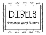1st Grade DIBELS EOY NWF WWR (whole words read) Growth Clip Chart