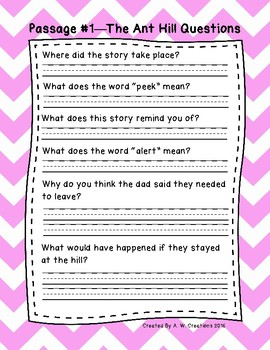 1st Grade Fluency Passages with Comprehension Questions Set A (#1-10)