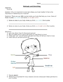 Core Knowledge - 1st Grade - Human Body Unit - Muscular System