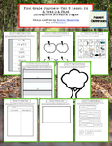 1st Grade Journeys Lesson 24 Interactive Notebook Pages