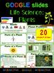 Life Science: Plants & Animal Google Interactive