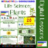 Life Science: Plants Interactive Google Slides