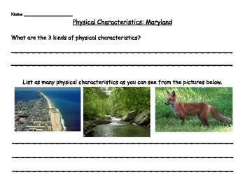 1st Grade Physical Characteristics