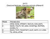 1st Grade Reach for Reading Unit 5 Vocabulary Cards