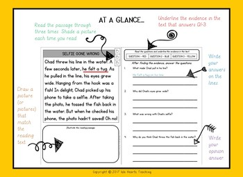 1st Grade Reading Passages (1st Grade Reading Comprehension - Find the Evidence)