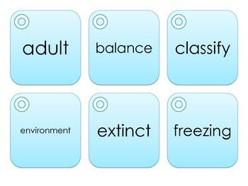 1st Grade Science Academic Vocabulary