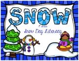 1st Grade Snow Day - Literacy