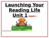 1st Grade Year-Long Unit 1-6 Strategies,Goals & Assessment