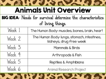 Animal Classification and Human Body Integrated Unit
