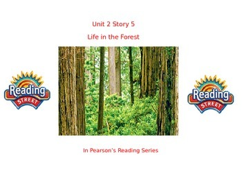 """1st grade  story 2.5 """"Life in the Forest"""" high frequency &spelling"""