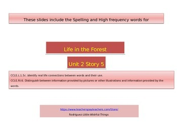 "1st grade  story 2.5 ""Life in the Forest"" high frequency &spelling"