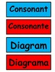 1st grade cognates for cognate word wall