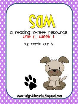 1st grade reading street: Unit R Bundle