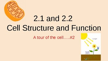 2.1 and 2.2 Cell Structure and Function...a tour of the cell #2