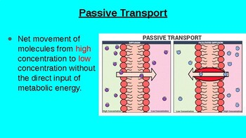 2.6, 2.7, and 2.9 Membrane Transport, Mechanisms of Transport and Facilitated