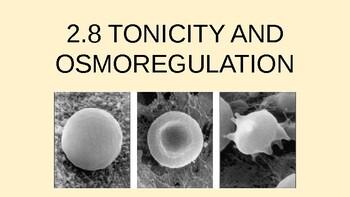 2.8 Tonicity and Osmoregulation