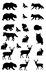 2 Cards with Animal silhouettes for Father's Day, 17 pages, Art Lesson 3D