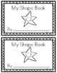 2-D Shapes-A Painting Book!