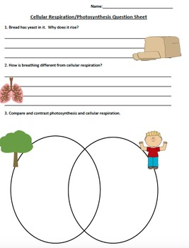 2-Day lesson Introduction to Photosynthesis and Cellular Respiration