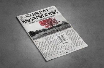 2 Newspaper Flyer Templates