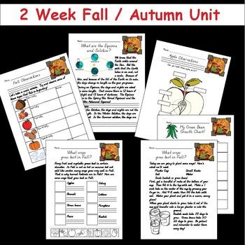 2 Week Fall Unit