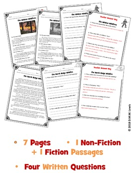 2 Summer Reading Comprehension Passages and Questions: Summer Wildfire Reading