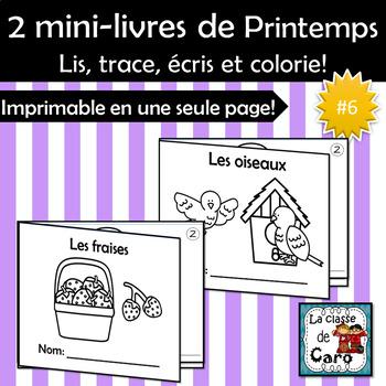 2 petits livres - Thème PRINTEMPS #6 - Les fraises - Les oiseaux