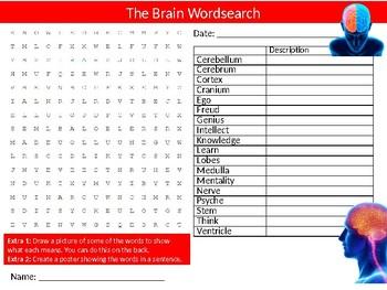 2 x The Brain Wordsearch Sheet Starter Activity Mind Psychology