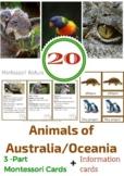 20 ANIMALS OF AUSTRALIA / OCEANIA 3 - PART MONTESSORI CARDS + INFORMATION CARDS