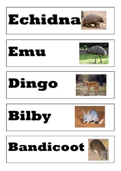 20 Australian Animal Task Cards