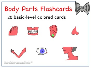 20 Colored Body Parts Flashcards