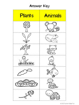 20 Interactive Science Picture Sorts