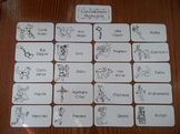 20 Laminated Constellations Flash Cards.   Astronomy Picture Word Card