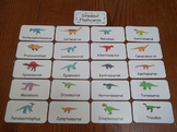 20 Laminated Dinosaur Flash Cards.  Preschool Picture Word Cards.