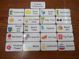 20 Laminated Summer Flash Cards.  Preschool Picture Word Cards.