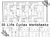 20 Life Cycles Printable Worksheets in a PDF file.Preschoo