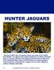 Reading Comprehension Passages Animals Volume 2 Grades 2-4
