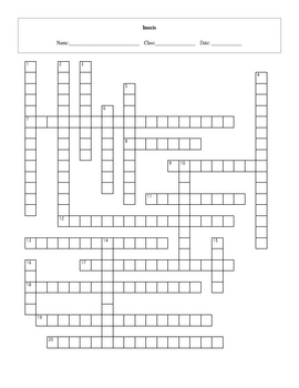 20 Question Insects Crossword with Key