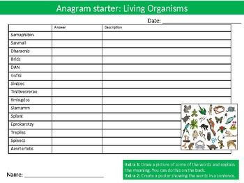 20 Science Biology Anagrams Puzzle Starter Activities Keyword