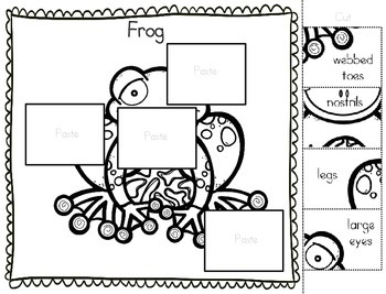 original-1647171-4 Zoo Animals Worksheets For Kindergarten Pdf on farm animals worksheets kindergarten, animal babies worksheets kindergarten, printable zoo worksheet kindergarten, zoo animals a to z, zoo dot to dot worksheets, zoo animals toys, zoo animals writing worksheets, zoo animals need worksheets, zoo animal patterns for preschoolers, zoo coloring pages for preschoolers, missing sound worksheets kindergarten, zoo animal crafts, zoo adding worksheet, zoo animal printables for preschool, zoo pattern worksheet, zoo animals coloring pages, baby animals worksheet for kindergarten, zoo animal addition worksheets, saxon phonics letter order kindergarten, print syllable worksheets kindergarten,