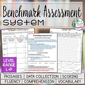 Benchmark Assessment System Range L-P