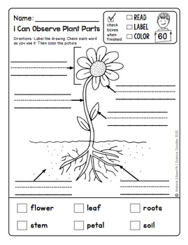 200+ Page NO PREP Science Doodles First Grade Printables Full Year