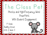 The Class Pet, Phonics and High-Frequency Word Student Engagement